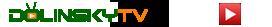 Dolinsky TV